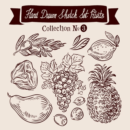 pineapple juice: hand-drawn collection of fruit. sketch. vector illustration