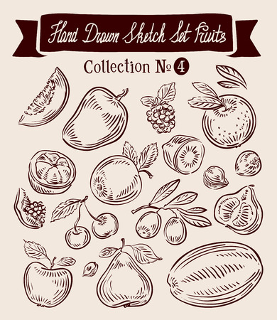 pomegranate juice: hand-drawn collection of fruit. sketch. vector illustration