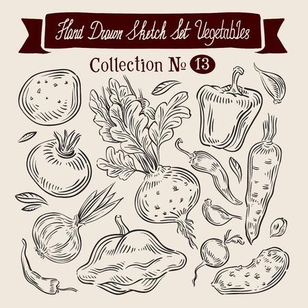 rutabaga: hand-drawn collection of vegetables. sketch. vector illustration Illustration