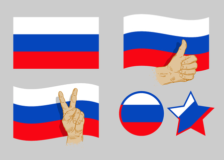siberia: Russian flag icon collection on a gray background. vector illustration Illustration