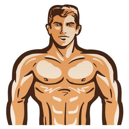 male model torso: the body of a man isolated on a white background.