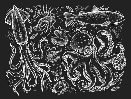 marine mammals sketch on a black background. illustration