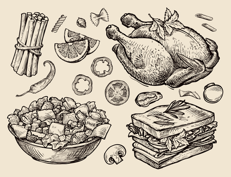 food. vector sketches hand drawn Illustration