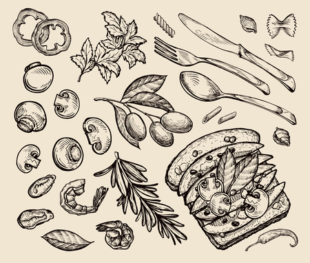 food. sketch toast, olives, parsley, rosemary, pasta, mushrooms