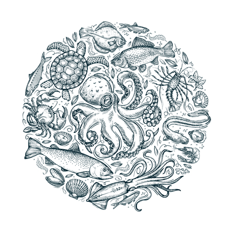fishing line: marine animals or seafood. hand drawn sketches. vector illustration Illustration