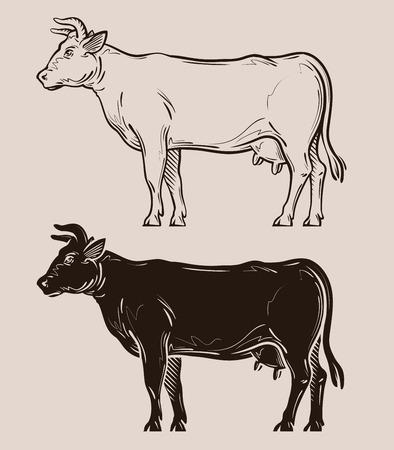 livestock: dairy cow vector. farm, livestock or milk icon