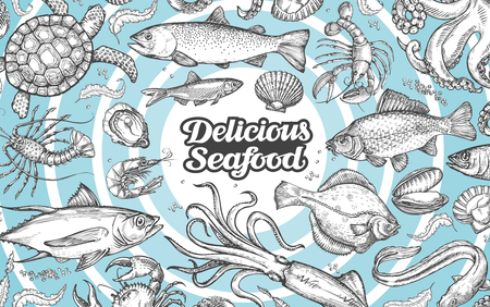 flounder: Vector hand drawn seafood, food. Vintage illustration