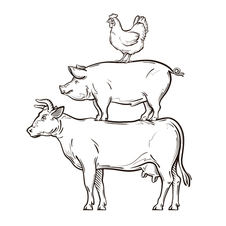 hand drawn cow, pig, chicken. vector illustration