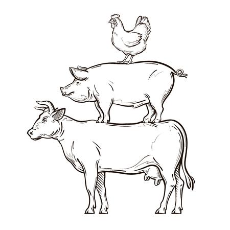 rysowane ręcznie krowa, świnia, kurczak. ilustracji wektorowych