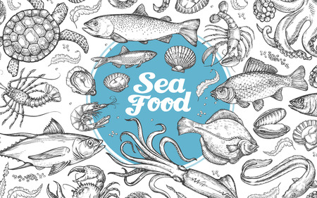 seafood or underwater world. hand-drawn sketches. vector illustration