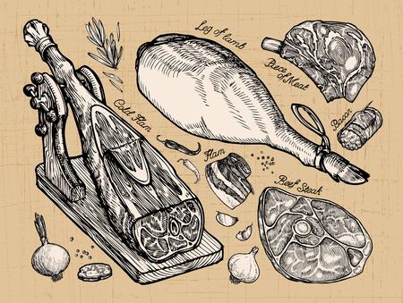 pimenton: carne. establecer elementos de croquis dibujado a mano. ilustración vectorial Vectores