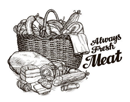 produits carnés. tiré par la main des croquis de nourriture. illustration vectorielle
