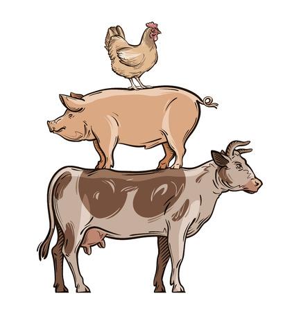 pet breeding: farm animals. cow, pig and chicken. vector illustration