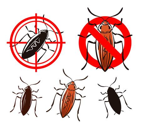 disease carrier: cockroach or beetle set icons. vector illustration Illustration