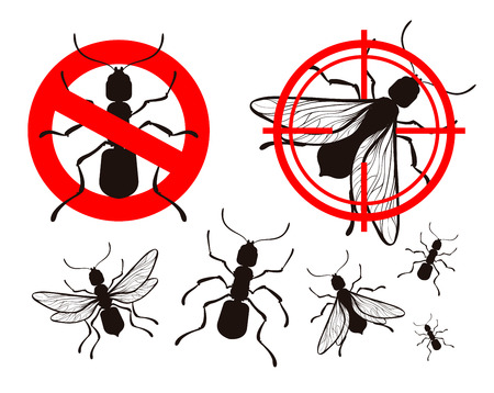 pest control equipment: pest control, ant icons set. vector illustration Illustration