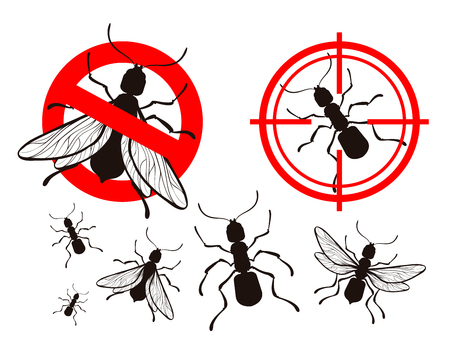 termite: termite or ant. pest control icons set. vector illustration Illustration