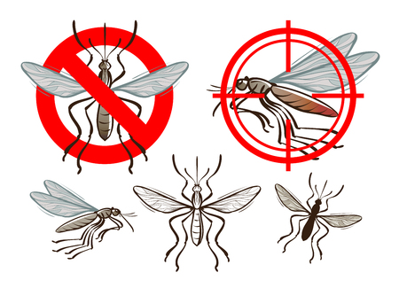 yellow fever: mosquito and prohibiting sign. vector illustration Illustration