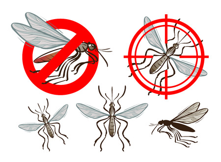 disease carrier: pest control, mosquito icon set. vector illustration
