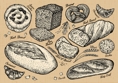 bread, bakery. hand drawn sketches of food. vector illustration