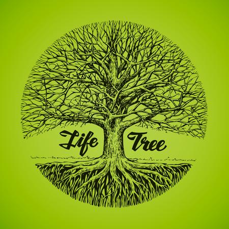 手描きのスケッチ ツリーのルーツを持つ。エコロジー、環境。自然  イラスト・ベクター素材