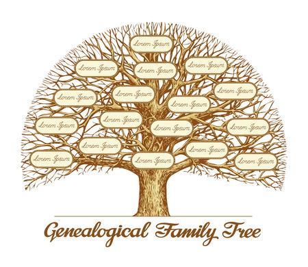 Árbol genealógico de la familia de la vendimia. dibujado a mano ilustración boceto