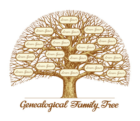 Vintage Genealogical Family Tree. Hand drawn sketch illustration