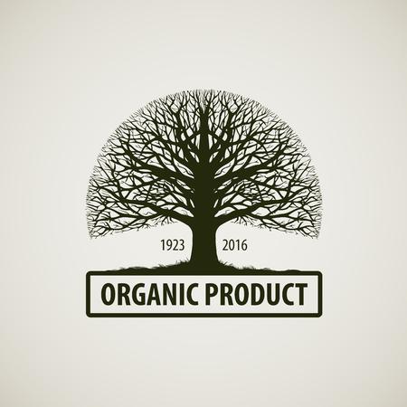 Baum ohne Blätter. Natur, Ökologie. Oak-Symbol. Bio-Produkt