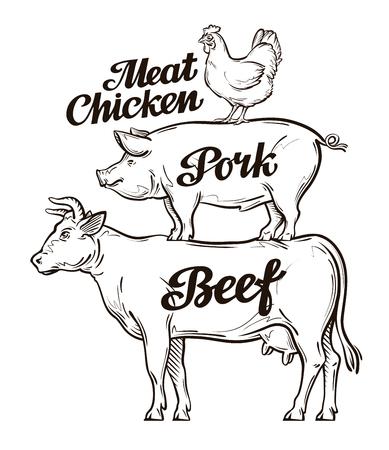 vaca: Agrícola, la cría de animales. Carne de res, cerdo y carne de pollo Vectores