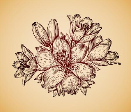 lily flower: Vintage flower. Hand drawn retro sketch lily. Vector illustration