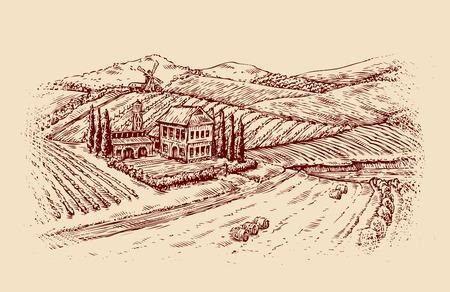 arable: Italy. Italian landscape. Hand drawn sketch vintage vineyard, farm. Vector illustration Illustration