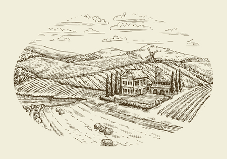 tuscan: Vineyard landscape. Hand-drawn vintage sketch agriculture, farming, farm Illustration
