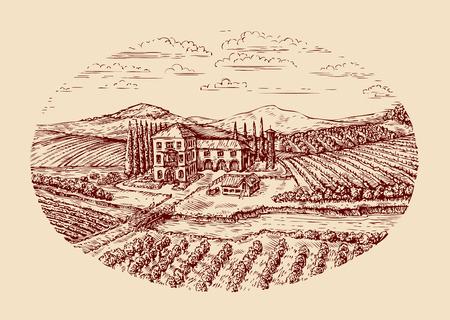 tillage: Italia. paisaje rural italiano. viñedo, granja, cultivo agrícola vendimia Bosquejo a mano