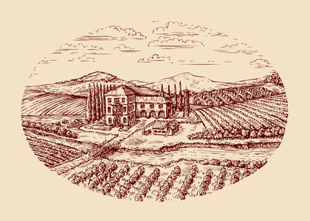 vinery: Italy. Italian rural landscape. Hand-drawn sketch vintage vineyard, farm, agriculture farming