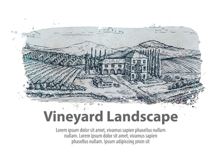 Vineyard landscape. Hand-drawn sketch farm, agriculture, harvest winery