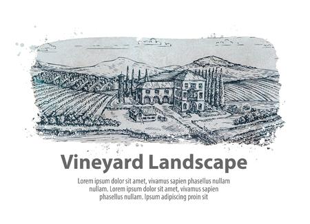 harvest field: Vineyard landscape. Hand-drawn sketch farm, agriculture, harvest winery Illustration