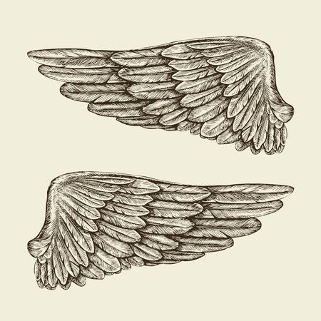 手には、ヴィンテージの翼が描かれました。スケッチ、ベクトル イラスト