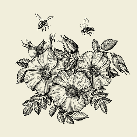 Bees flying to the flower. Hand-drawn beekeeping. Vector illustration  イラスト・ベクター素材