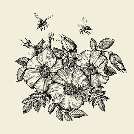 Bijen vliegen naar de bloem. Handgetekende bijenteelt. vector illustratie Stock Illustratie