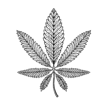 Marijuana ethnic graphic style. Cannabis, marihuana hemp symbol Illustration