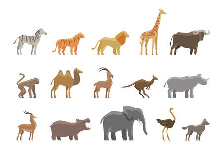 hippopotamus: Animales. Establecer los iconos y símbolos de colores. ilustración vectorial