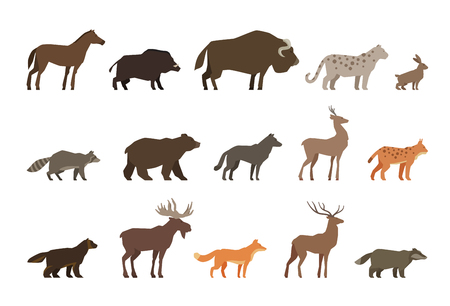 lynx: Animals set of colored icons isolated on white background