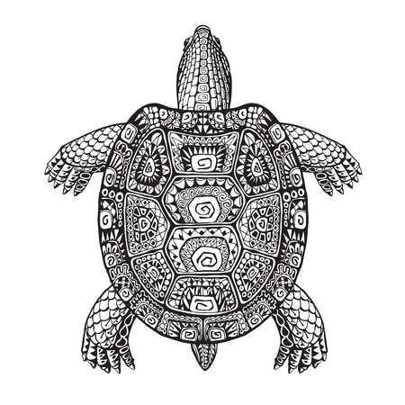 Turtle ethnic graphic style with decorative pattern. Vector illustration