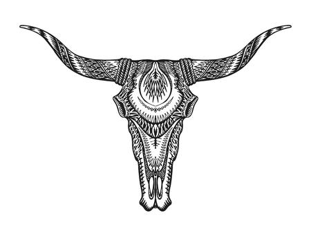 handdrawn: Decorative Indian bull skull. Hand-drawn vector illustration