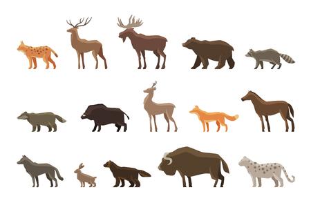 동물 아이콘 설정. 벡터 기호 살쾡이, 사슴, 엘크, 곰, 너구리, 오소리, 멧돼지, 노루, 여우, 말, 늑대 토끼 사향 황소 눈 표범 울버린 일러스트