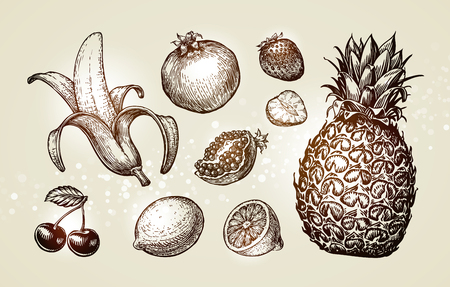 Collection food sketch. Hand drawn fruits. Vector illustration Illustration