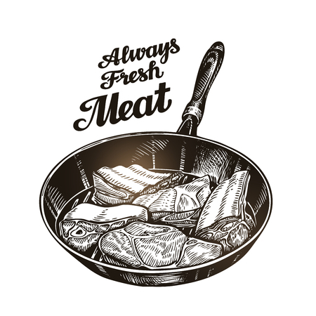 Meat, steak in frying pan. Hand-drawn sketch vector illustration