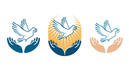 goodness: Dove bird carrying olive branch in beak as a peace symbol. Vector logo or icon isolated on white background