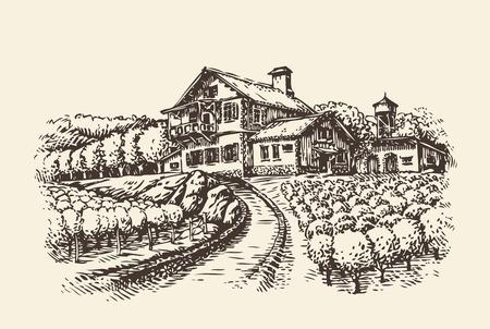 ファームの風景です。手描きぶどう畑や農業。ビンテージ スケッチ ベクトル図