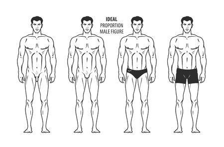 Ideal proportion, male figure. Hand-drawn outline man in full growth, human. Vector illustration isolated on white background Stock Vector - 67209630