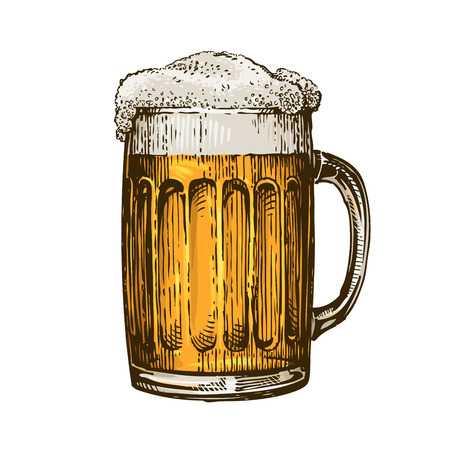 Beer in glass mug with foam. Hand drawn vector illustration isolated on white background Çizim